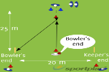 Choose the End and back upGround fielding and throwingCricket Drills Coaching