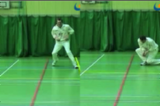The Long Barrier. | Ground fielding and throwing