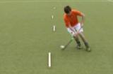 reverse stick lift over the stick3D skillsHockey Drills Coaching