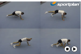 Linking three point balancesKey 2 content Walking-Stepping-LeapingGymnastics Drills Coaching