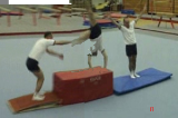 Hollander vaulttwist cart wheelGymnastics Drills Coaching