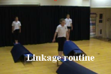 Linkage - Action RoutineKey 1 GC LinkageGymnastics Drills Coaching