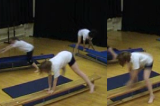 Straddle Vault along apparatusKey 1 content ApparatusGymnastics Drills Coaching