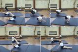 Dish shape to Dish RockingKey 3 Body conditioningGymnastics Drills Coaching