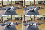 Weight on hands full twistKey 3 Jumping & TwistingGymnastics Drills Coaching