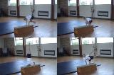 Headstand sandwichKey 3 HeadstandGymnastics Drills Coaching