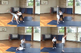 Handstand with forward roll exit with straight arms with spotter Drill Thumbnail