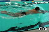 Kick Dolphin Legs Drill Thumbnail