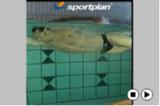Frontcrawl - TechniqueFrontcrawl - TechniqueSwimming Drills Coaching