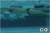 | Frontcrawl Drills