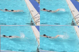 Butterfly leg actionButterfly - TechniqueSwimming Drills Coaching