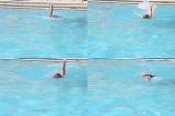 Backstroke full stroke front onBackstroke - TechniqueSwimming Drills Coaching