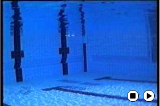 No.3 Dive EntryBreaststroke - TechniqueSwimming Drills Coaching