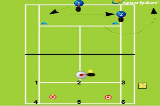 Alternating Shots Forehand to BackhandForehand & Backhand DrillTennis Drills Coaching